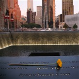 Spirit Lunch Cruise and 911 Memorial