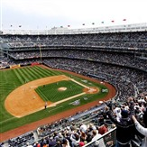 Yankees vs Tampa Bay  1pm