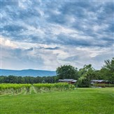 Mount Nittany Wine Trail