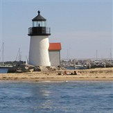 Cape Cod Lobster Roll Cruise and Whale Watching